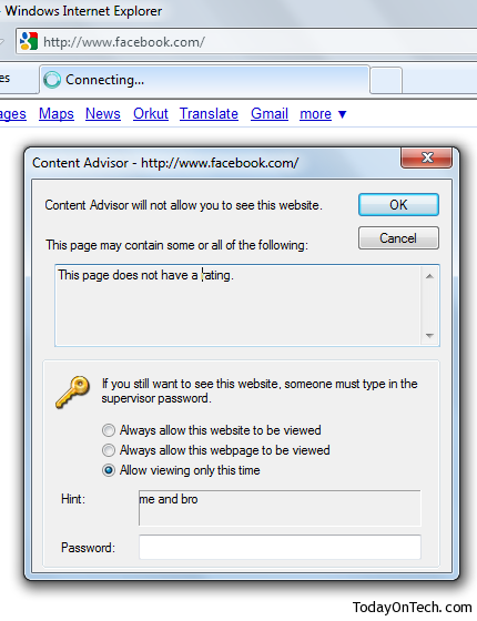 internet explorer blocked website